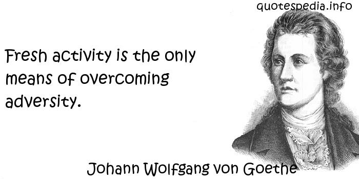 Johann Wolfgang von Goethe - Fresh activity is the only means of overcoming adversity.