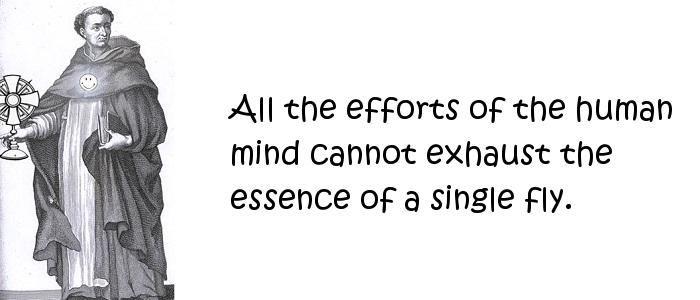 Thomas Aquinas - All the efforts of the human mind cannot exhaust the essence of a single fly.