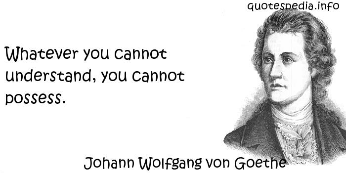 Johann Wolfgang von Goethe - Whatever you cannot understand, you cannot possess.