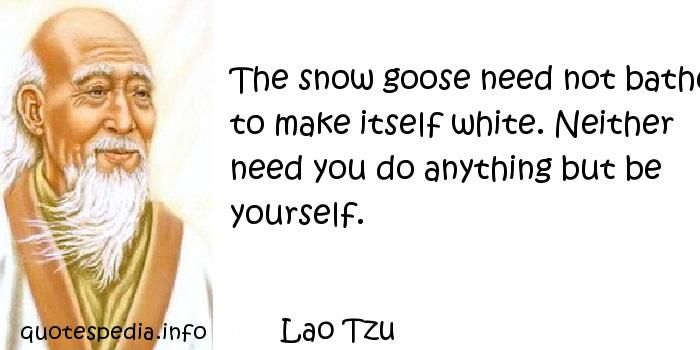Lao Tzu - The snow goose need not bathe to make itself white. Neither need you do anything but be yourself.